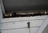 Visita a Mercado de Santa Florentina tras la Gota Fría