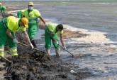 30 operarios contratados de urgencia por la CARM se unen a las tareas de limpieza del Mar Menor