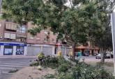 Plan de choque de Parques y Jardines en barrios y diputaciones