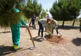 Cartagena se suma a la campaña europea 'Un árbol por Europa'