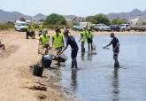 Personal de limpieza municipal retira peces muertos de las playas del Mar Menor