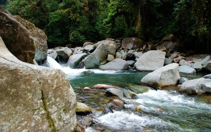 Parque_Nacional_Tapanti_Costa_Rica