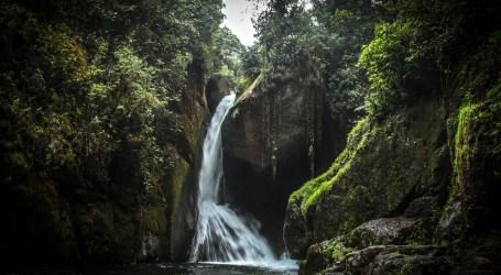 Catarata Río Savegre, una caminata llena de paz con la naturaleza