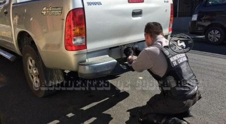 Policía Municipal baja placas de carro de la Municipalidad de Cartago mal estacionado