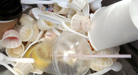 Universidad Cartaginesa libre de plásticos de un sólo uso