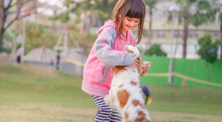 Autoridades hacen llamado a padres y madres para prevenir las mordeduras de perros