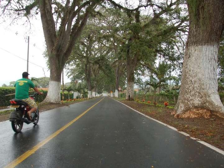 entrada municipio Toro (1)