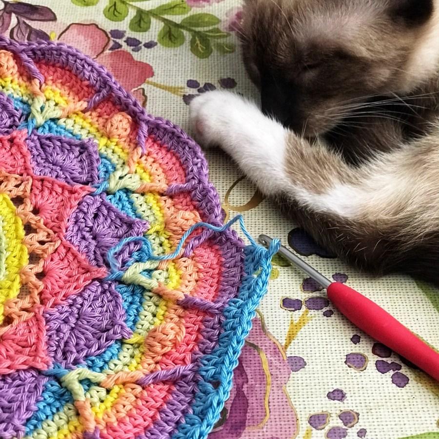 cat sleeping by crocheted mandala