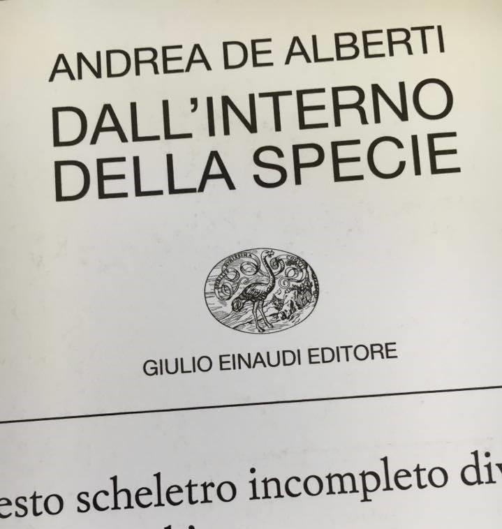 ANDREA DE ALBERTI copertina
