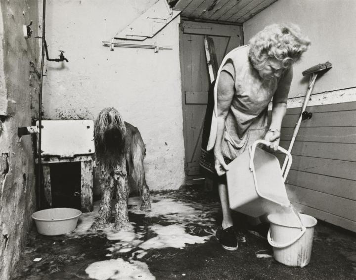 Dogs Hairdressing, Shields Road (Byker) 1981, printed 2014 Sirkka-Liisa Konttinen born 1948 Purchased 2015 http://www.tate.org.uk/art/work/P81247