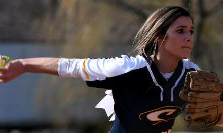 Softball Round-up: Lady 'Landers upend UH for key win; Unaka EHS also take wins