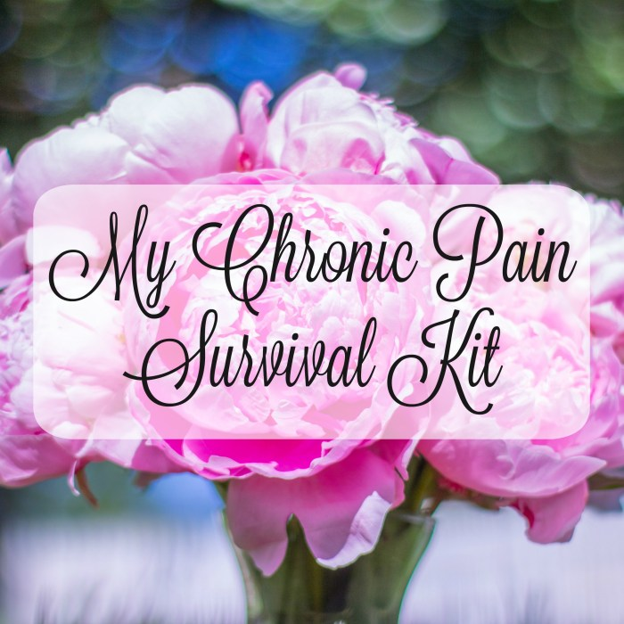 My Flare Day Survival Kit for Chronic Pain