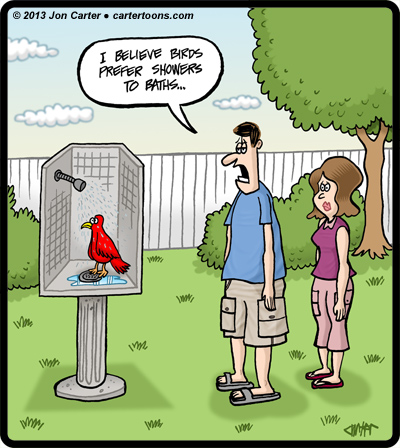 BirdShower
