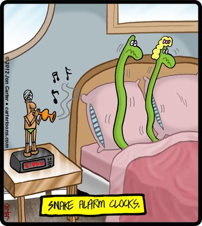SnakeAlarms