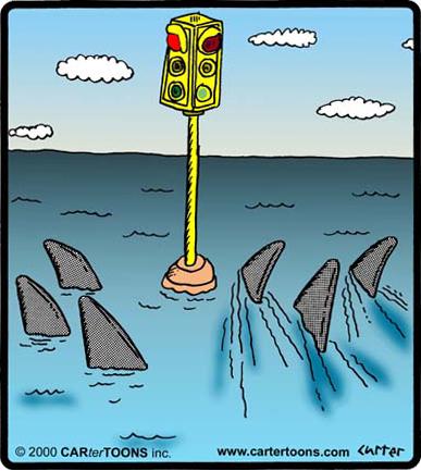 sharkstoplite