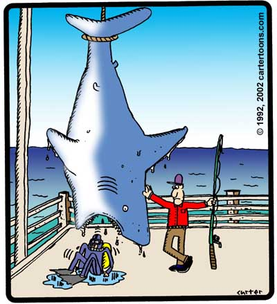 sharkcatch