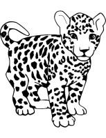 Dibujos de leopardos para colorear