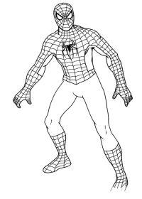 Disegni Gratis Da Colorare Spiderman Disegno Spiderman