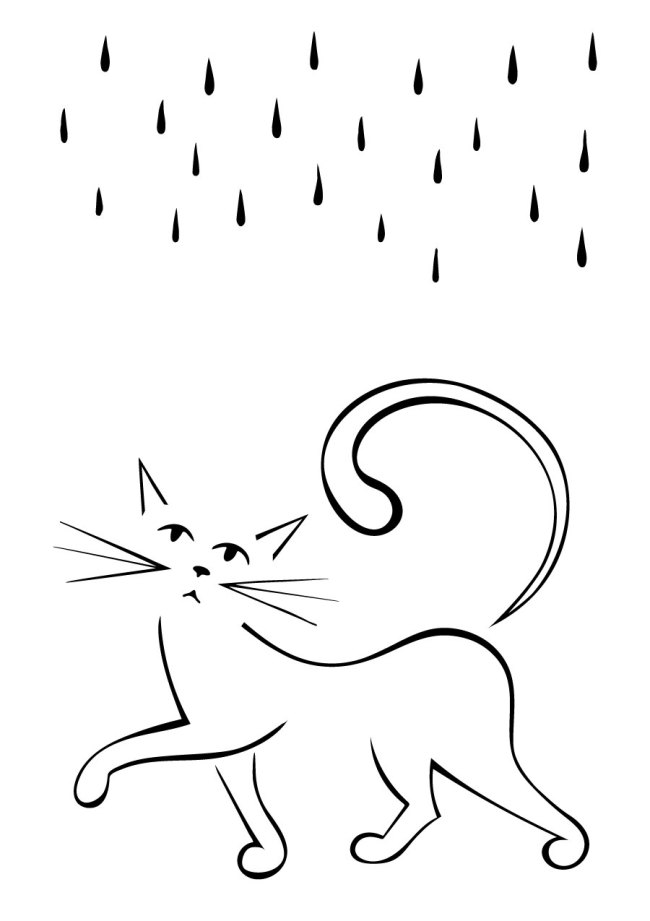 cat and rain silhouette