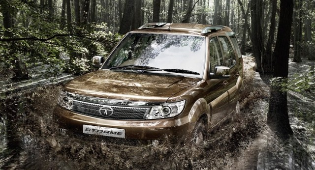 Safari Storme featured