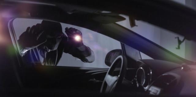Car Thief 1