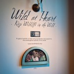 """Wild At Heart"" Opening at Thinkspace Gallery"
