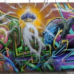Graffiti Primer by Steve Grody, author of Graffiti LA.