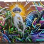 Graffiti Primer by Steve Grody, author of Graffiti LA.