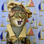 "Save the Date: February 4–""Ship Cats"" Lecture by Paul Koudounaris, PhD"