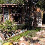 "Cartwheel Art Tours x Atlas Obscura: ""Shrine's Haunted Shack Gardens"" – Pasadena"