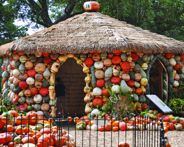 Fancy pumpkin storytime gazebo with stories written on the interior