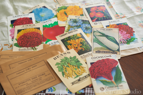Group of vintage seed packets