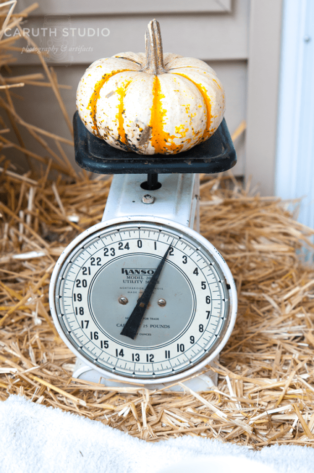 Mini pumpkin on vintage scale