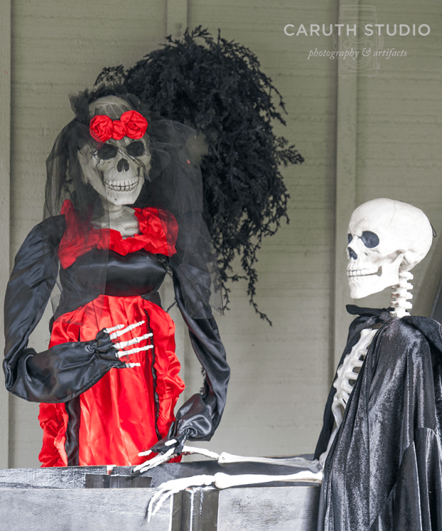 Skeleton mourner with black veil and red and black dress