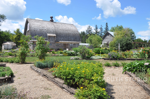 Gardens and barn at Prairie Pedlar