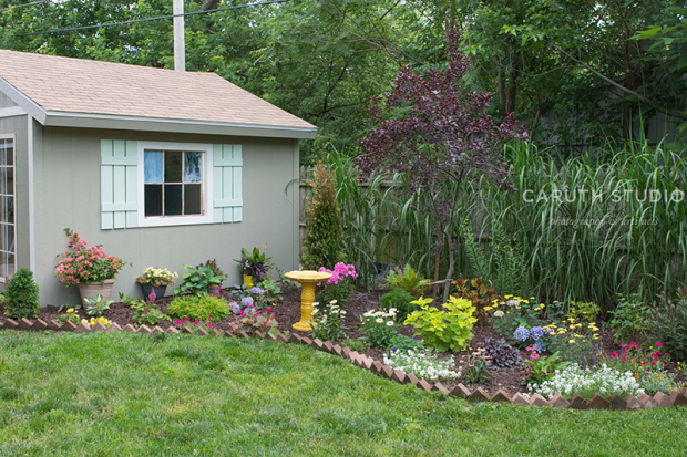 garden next to shed