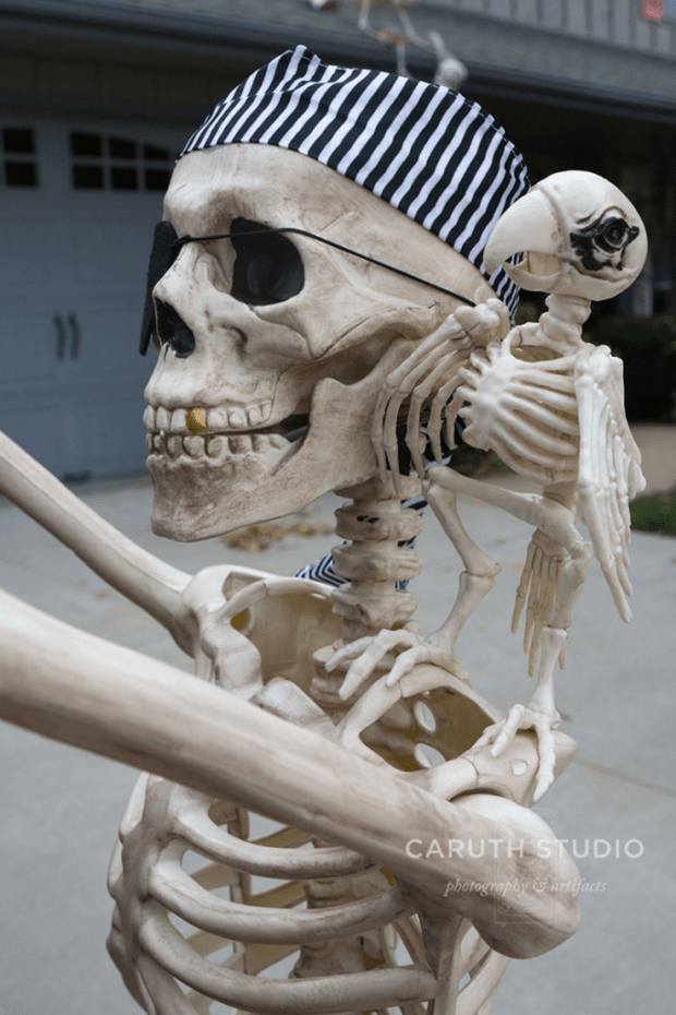 blue and white bandana on a smiling, gold-tooth skeleton with an eyepatch and her skeleton parrot buddy on her shoulder