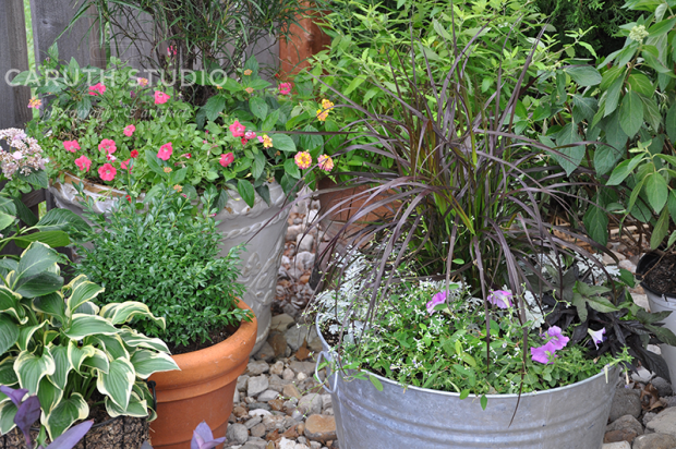 Colorful planted patio containers