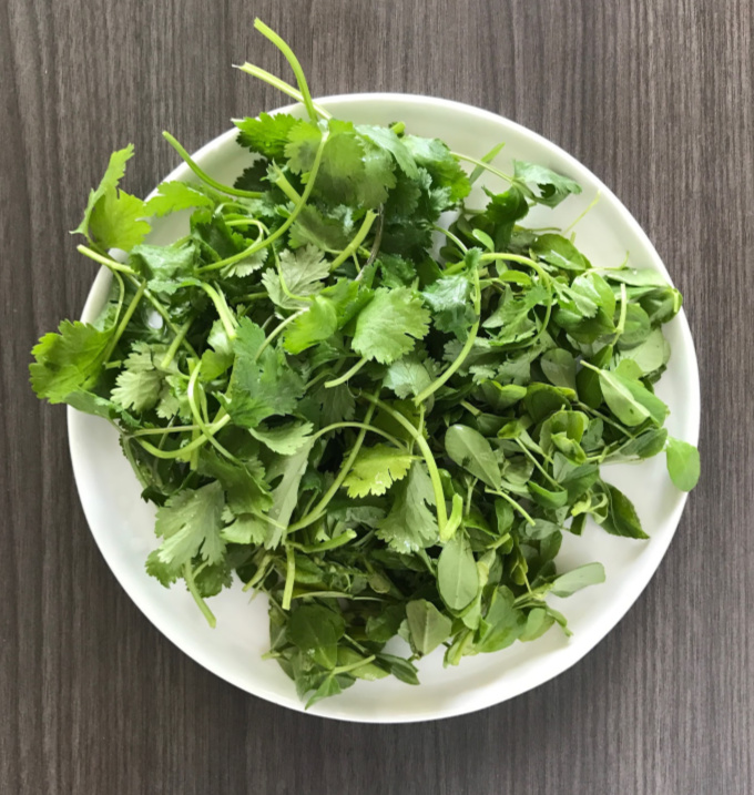 Methi and cilantro cleaned and plucked