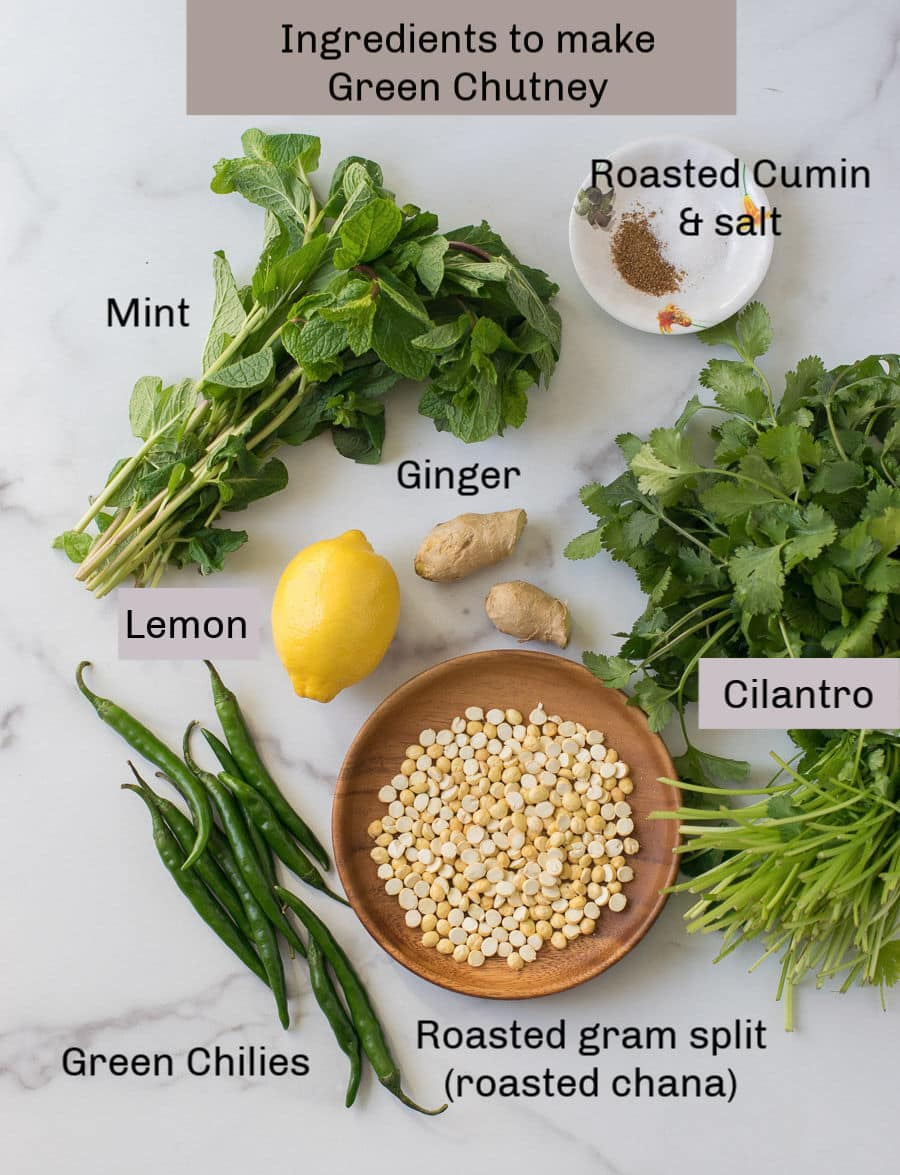 Ingredients to make cilantro mint chutney