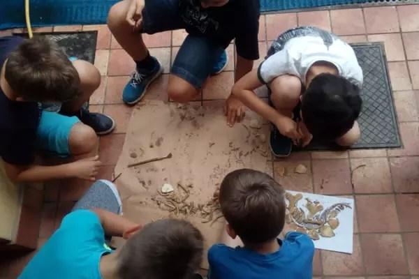 Dino excavation Croatian American Society Zagreb