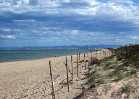 Casa Oliva Playa