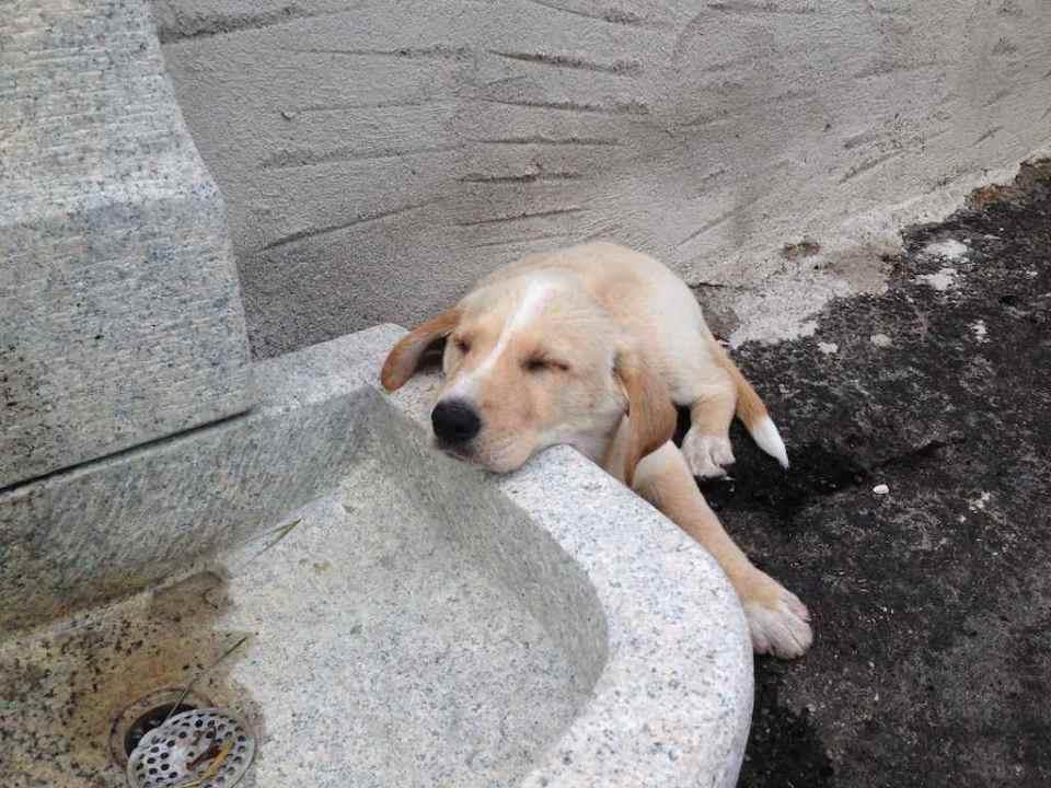 Per luce tutti i posti vanno bene per dormire
