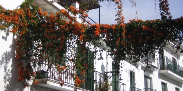 Calle Hernando de Carabeo