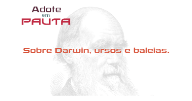 Sobre Darwin, ursos e baleias
