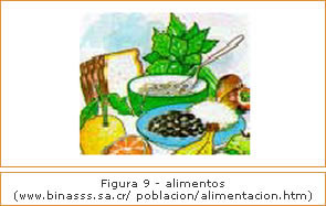 Figura 9 - Alimentos