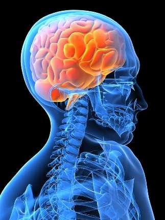 Neuromodulação (25)