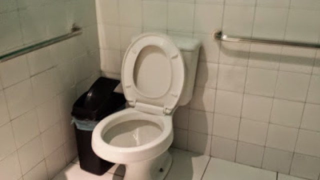 barras de apoio- banheiro adaptado- de papo com Claudinha- casadaptada