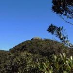 Monte Barão