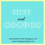 Stuff + Things 6.25.15